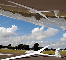 glider in reflection. by sandyprints
