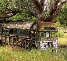 Old Bus, Ingebyra, Snowy Mountains - NSW by Steve Fox