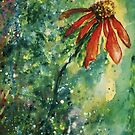 Echinacea by Robin Monroe