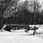 Central Park Bridge by Christine &quot;Xine&quot; Segalas