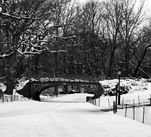 "Central Park Bridge by Christine ""Xine"" Segalas"