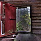 Red Door at the Cabin by toby snelgrove  IPA
