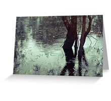 Rains in the King valley 3 Greeting Card