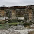 Old Railroad Bridge Over the Nolan River by Susan Russell