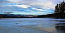 Kezar Lake (Upper Bay) - Morning Light by T.J. Martin