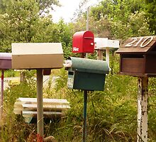 Mob of Letterboxes - Underwood, Tasmania by RainbowWomanTas