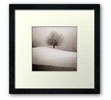 winter degradee Framed Print
