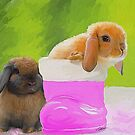 Mini Lop Bunnies by Cazzie Cathcart