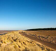 Holkham Dunes by Robert  Geldard