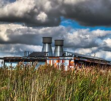 R.S.P.B. Center Rainham Marshes by timmburgess