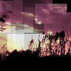 Silhoet by Hazel Dean