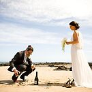 Mike and Zoe's Knot - bride and groom on the beach by AquaMarina