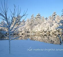 Let nature inspire serenty - a snowscape by Lori Worsencroft