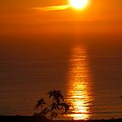 Christmas Eve 2010 Sunset over Newport Beach, CA, USA by mensoart