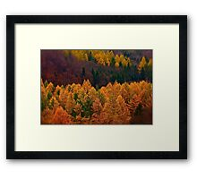 Wonder's of autumn colors  - Poloniae Alpe Besczade . by Brown Sugar - Mr.Medicine . F** Favs  (8) . Views (460) ). Thank you a bunch friends !    Framed Print