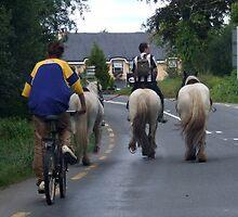 Irish Traffic-Jam by CFoley