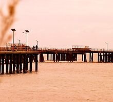 Rapid Bay Jetty by Ali Brown