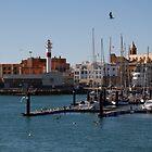 Rota Marina by fototaker