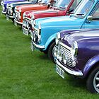 Classic Minis by Bethany Olechnowicz