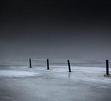Poles at Daugaard #2 by Kim Hansen