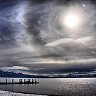 A Winter Sky by Barbara  Brown