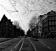 New Year's Day in Amsterdam by Valerie Rosen