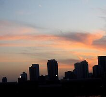 Miami Sunset by Rosie Brown