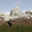WDW Animal Kingdom Expedition Everest by chewi