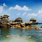 Tobacco Bay  by Richard Earl