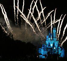 WDW Magic Kingdom Castle by chewi