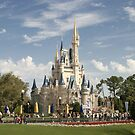 WDW Magic Kingdom Castle by chewi