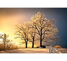 Luminous - Blue Ridge Winter Sunset Photographic Print