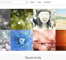 Beautiful Bokeh - 14 January 2011 by The RedBubble Homepage