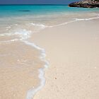 Beach, Rose Island, Bahamas by Shane Pinder