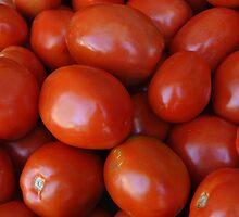 Fresh Tomatoes by Lisa  Morris