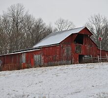 """Red Barn in the Snow"" by Doyle  McClung"