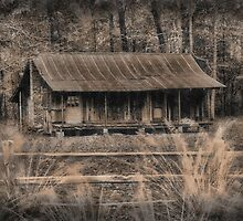 The Old Home Place by RickDavis