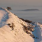 Winter on Hereford Beacon (viewed 237 times) by Cliff Williams