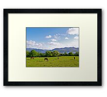 Springtime in County Kerry Framed Print
