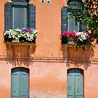 The windows of Murano, Venice by Ali Brown