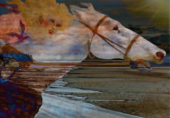 Sea Wind by Pamela Phelps