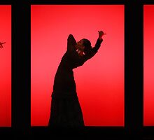 Flamenco by Naomi Mawson