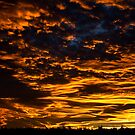 Tonight's Sunset by Robyn Carter