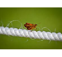 Walking the Tightrope Photographic Print