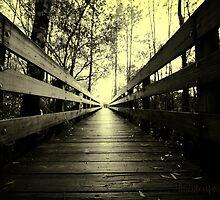 boardwalk, 6 mile cypress Fort Myers, Florida by John Broadhead