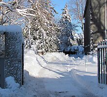 Snowy Gated Drive by Monica M. Scanlan