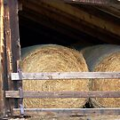 ROLLED HAY by dragonindenver