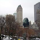 New York City from Central Park by Wayne George