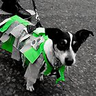 The Morris Dog.  by Ruth Jones
