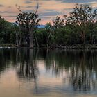 Reflections Australiana - Murray River , Australia - The HDR Experience by Philip Johnson